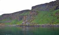 Happy Easter from Iceland by the Puffins